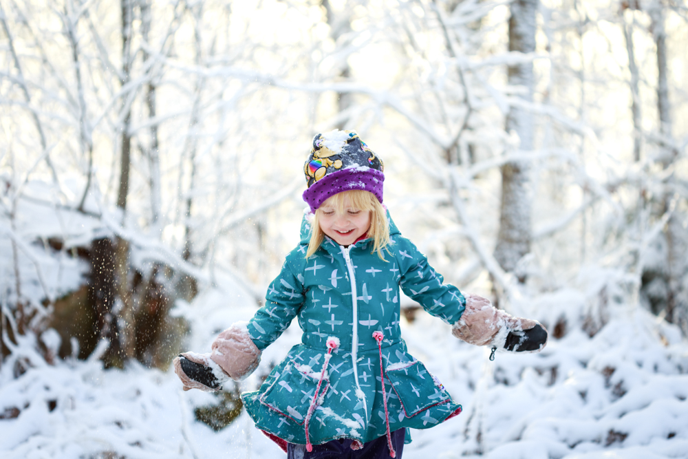 Vinter för en dag